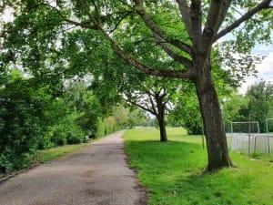 Vigerslevparken Engdraget Valby