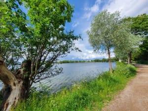 Damhussøen Valby