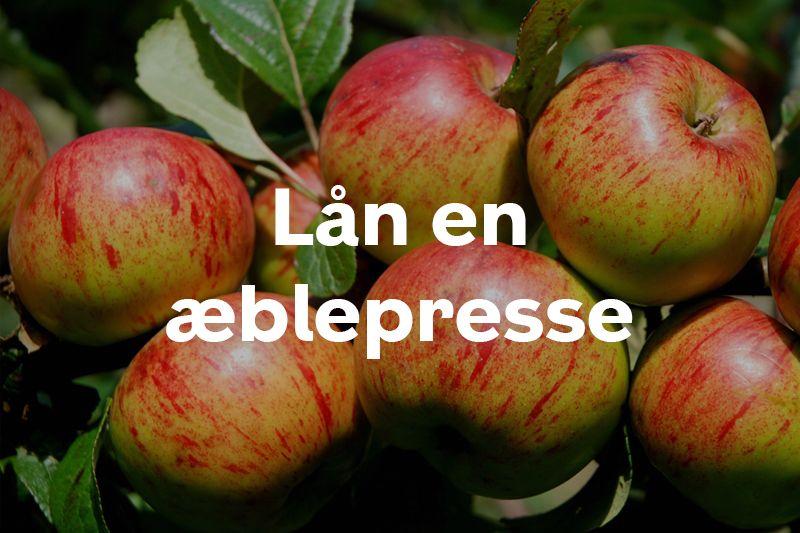 Lån en æblepresse knap forsiden