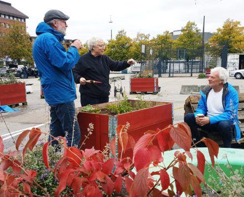 Efterårsplantedag Valby miljøgruppe 2