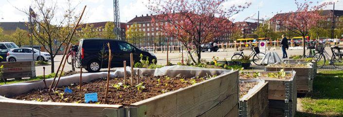 Valbyhaven Toftegårds Plads Valby arbejdsdag maj