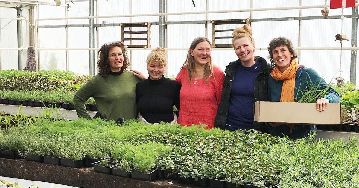 Klimafestival Valby 2019 Naturplanteskolen