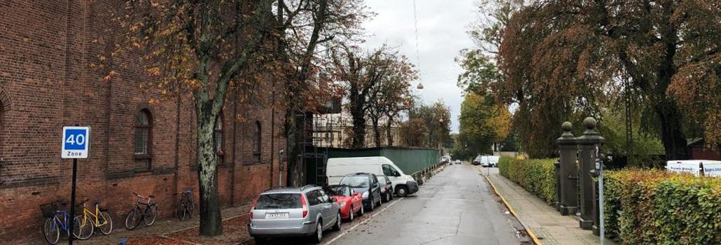Trærække gamle carlsberg vej