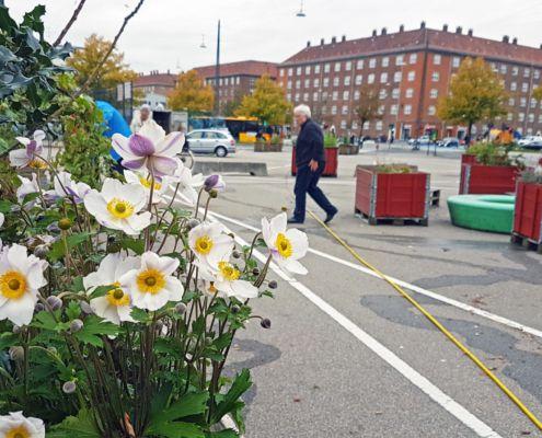 Efterårsplantedag Valby miljøgruppe 12