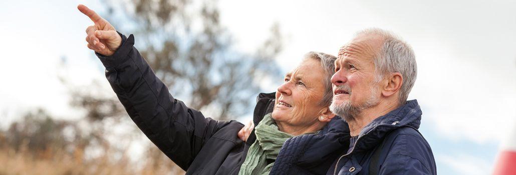 valg til ældreråd nyhed