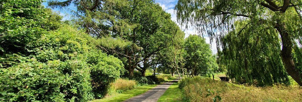 Parktræf Vigerslevparken nyhed