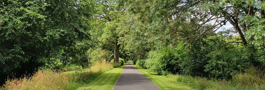 Vigerslevpark- og vejgruppen nyhed