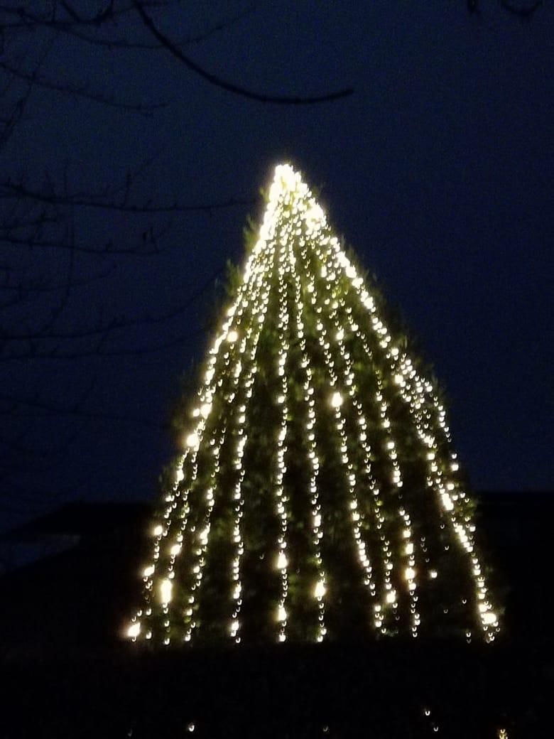 Juletræ FL Smidth