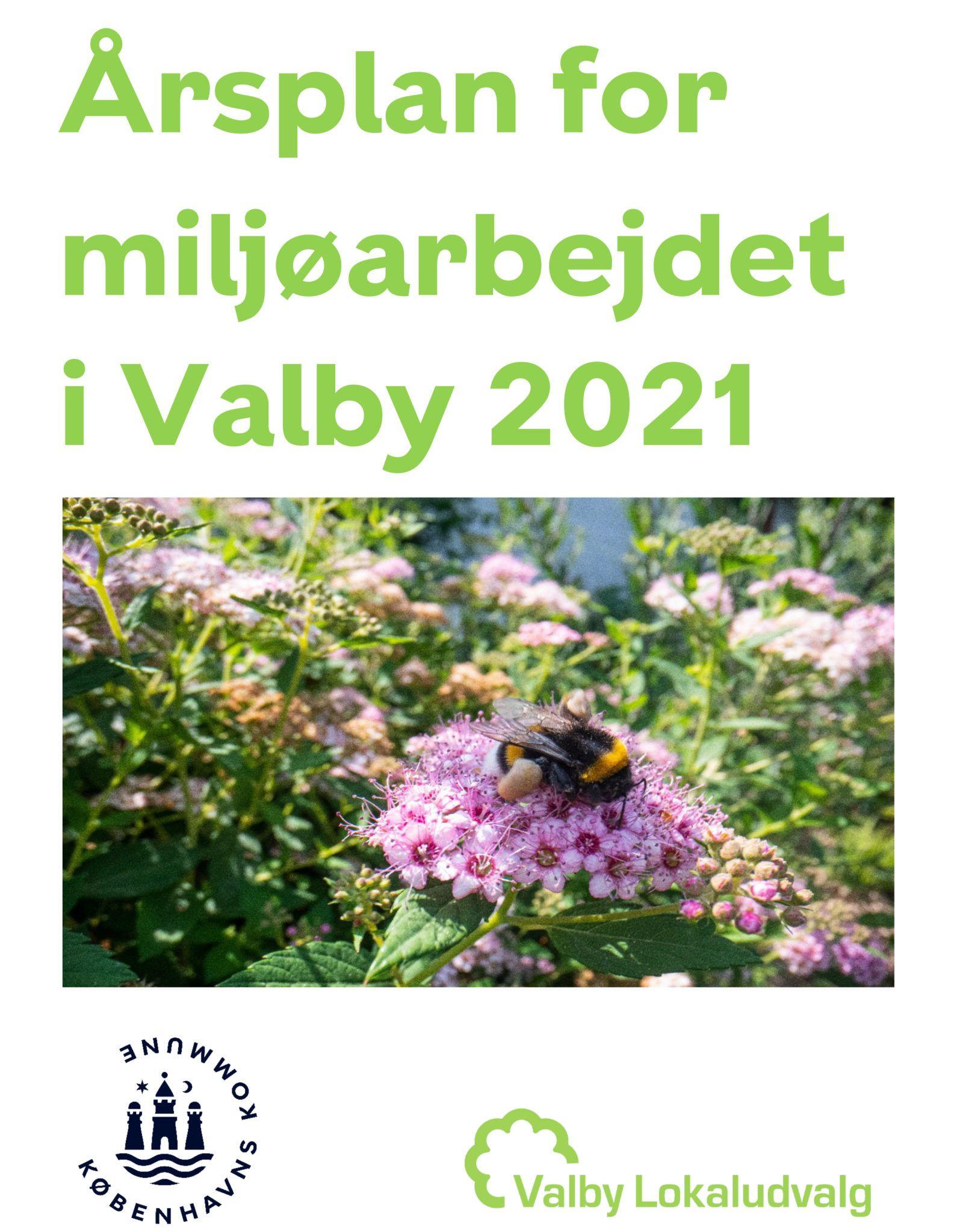 Årsplan og budget for miljøarbejdet i Valby 2021