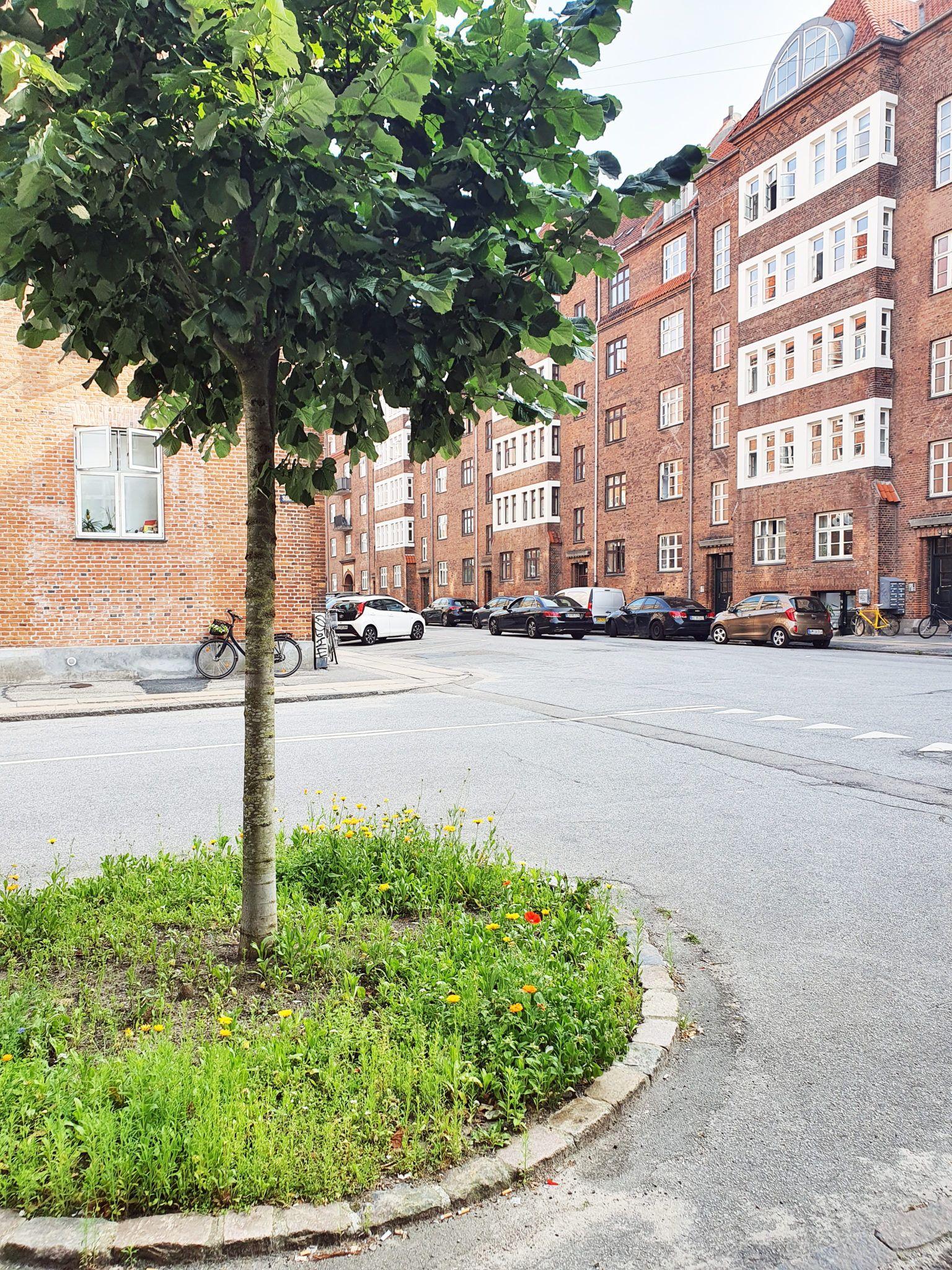 Gadehave Molbechsvej (5)